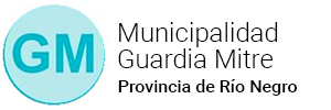 Municipio de Guardia Mitre